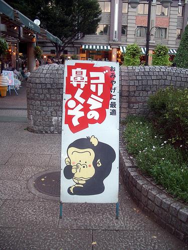 Gorilla_nosecandy